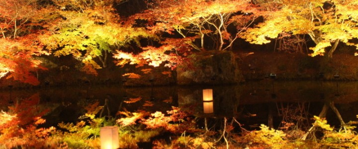 佐賀県武雄市 御船山楽園、紅葉のライトアップを見てきました!!