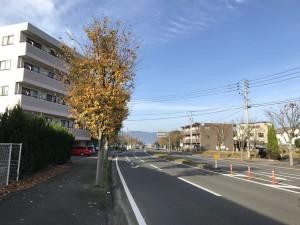 伊万里ハーフスタート付近 201612井川歯科広報撮影 3