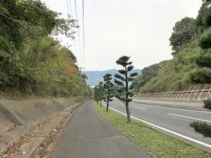 伊万里ハーフ制覇第2日目 (20)
