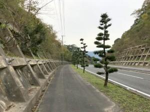 伊万里ハーフ制覇第2日目 (19)