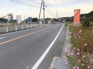 伊万里ハーフ制覇第2日目 (11)